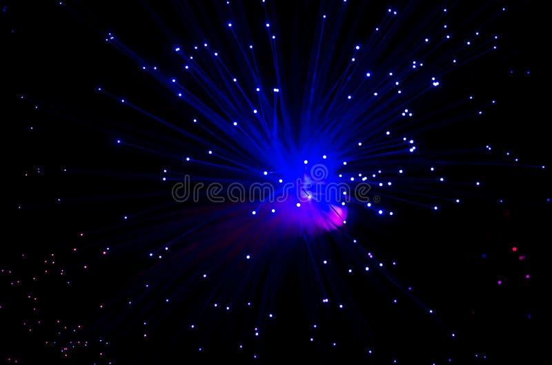 Optiskt för fiber royaltyfri fotografi