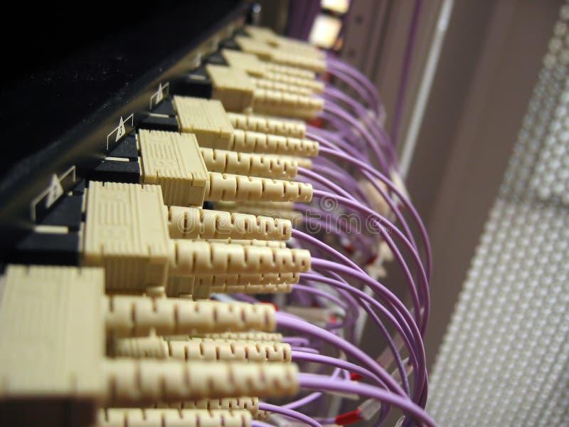 optiskt fibernätverk royaltyfria bilder