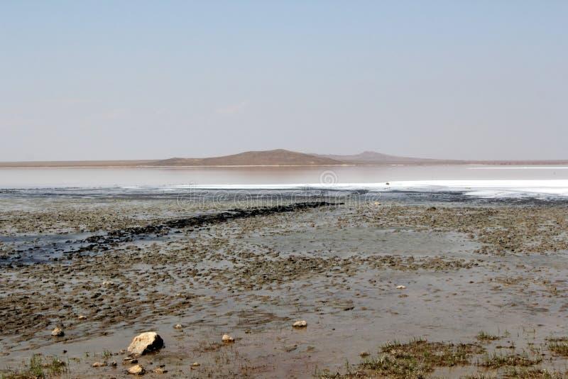 Opukreserve en zout meer, de Krim stock foto