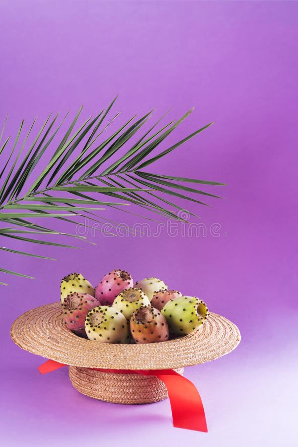 Opuntia fruit in a straw hat with a palm leaf on a trendy purple background. Prickly pear or Fichi Dindia Salento, Puglia. Minimalism, pop art, copy space royalty free stock photos