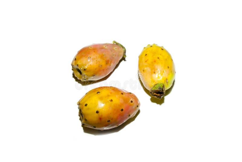 Opuntia Fruit. On White Background stock photography