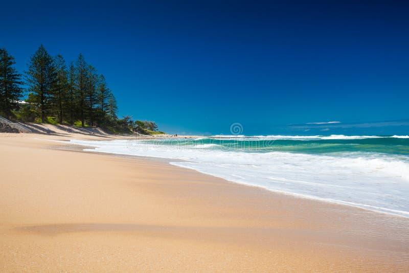 Opustoszała sekcja Dicky plaża na słonecznym dniu, Caloundra, Austr fotografia stock