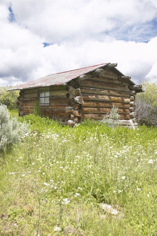 Opustoszała stara farma w lecie w Centennial dolinie blisko Lakeview, MT zdjęcia royalty free