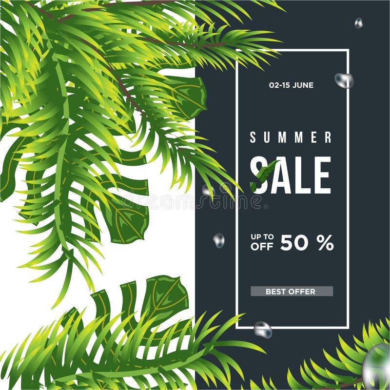 opuszcza? drzewka palmowego tropikalny 50% sprzedaży sztandaru szablonu projekt Du?ej sprzeda?y specjalna oferta Oferta specjalna royalty ilustracja