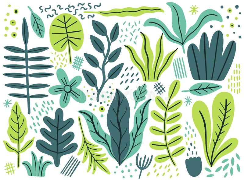 Opuszcza mieszkanie set Tropikalne rośliny odizolowywać na białym tle Natury prosty zielony kwiecisty Minimalna stylowa fantazja ilustracji