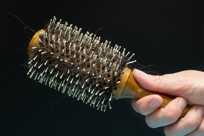 Opuszczający kędziory włosy na grępli w ręce na czarnym tle, pojęcie fotografia royalty free