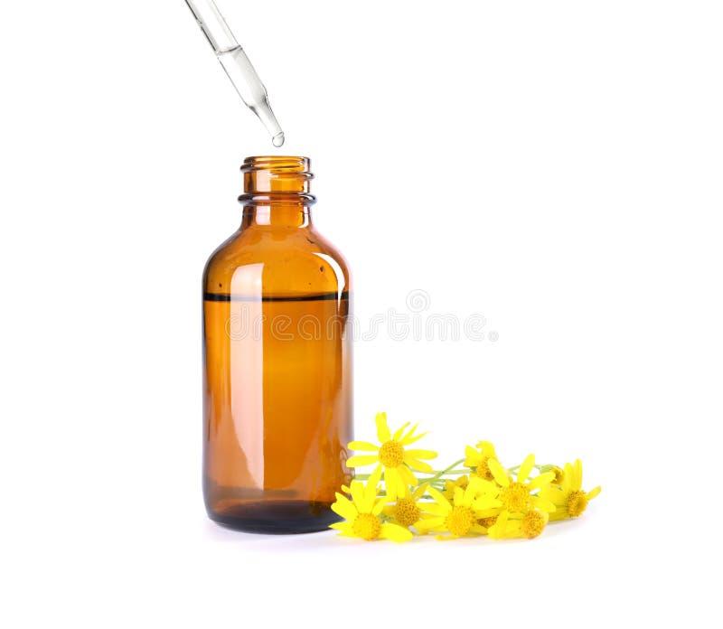 Opuszczający ziołowego istotnego olej w butelkę odizolowywającą zdjęcia stock