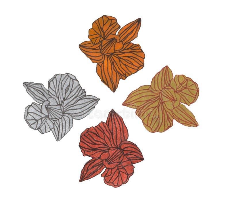 OrÑ  chował kwiat ilustrację ilustracji