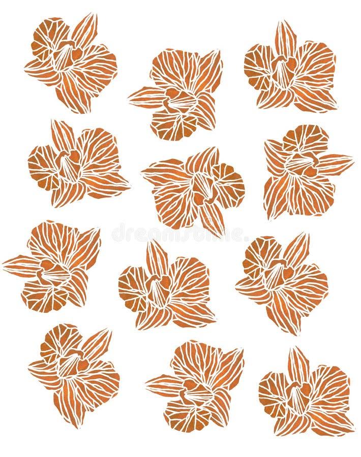 OrÑ  chował kwiat pomarańcze wzór ilustracji