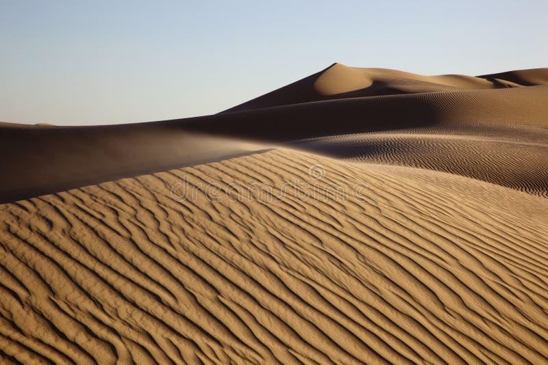 Orörda Sanddyner arkivfoto