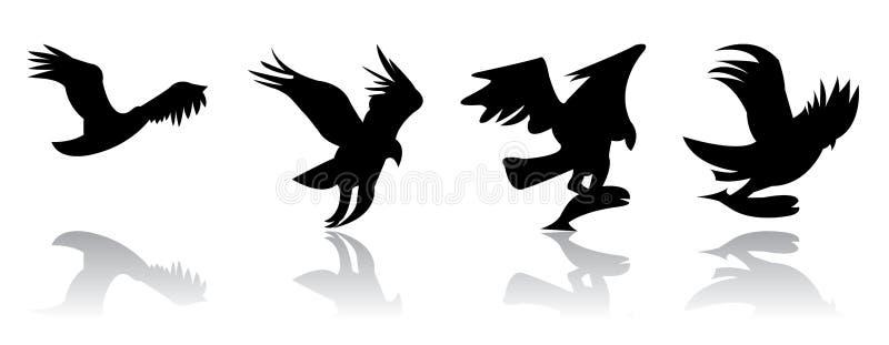 orła połów zdjęcia stock
