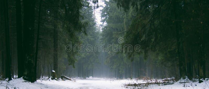 Orša belarus immagini stock