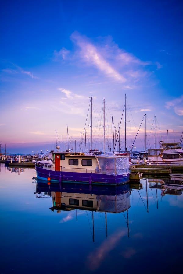 Ora blu al porto di Toronto fotografia stock libera da diritti
