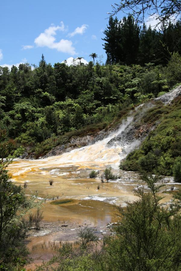 Orakei Korako hidden geothermal valley - Emerald terrace, New Zealand: View on colorful rainbow sinter terrace. Covered with yellow and white microbial mats stock photo
