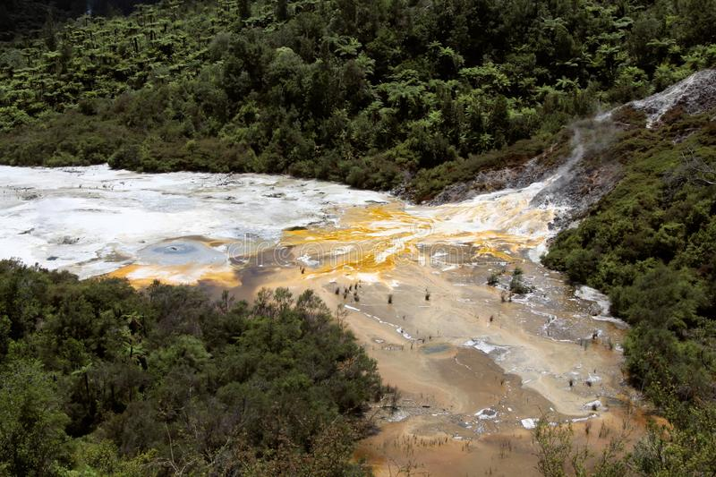 Orakei Korako hidden geothermal valley - Emerald terrace, New Zealand: View on colorful rainbow sinter terrace. Covered with yellow and white microbial mats stock photos