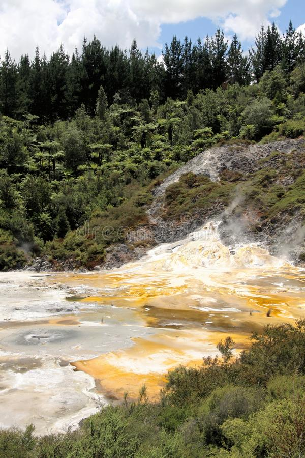 Orakei Korako hidden geothermal valley - Emerald terrace, New Zealand: View on colorful rainbow sinter terrace. Covered with yellow and white microbial mats royalty free stock images
