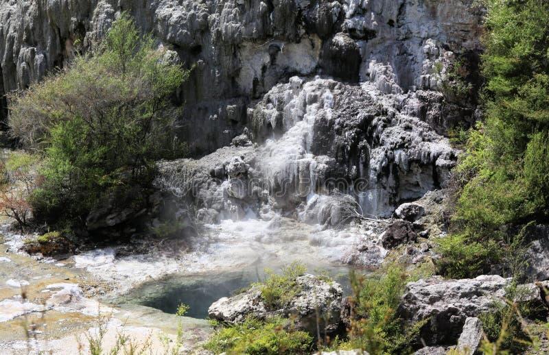 Orakeikorako verborgen geothermische vallei: Weergeven op cascade met het stomen van hete duidelijke blauwe alkalichloride thermi royalty-vrije stock foto's