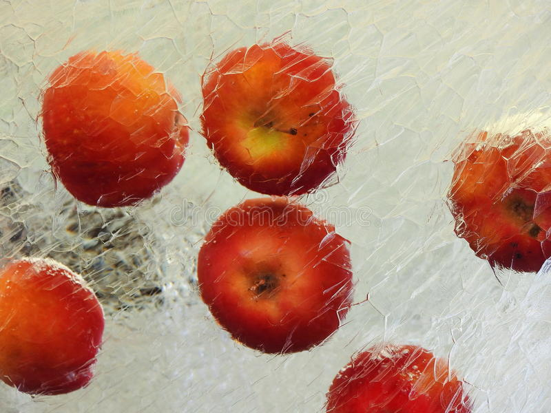 Orange Äpfel im Eis lizenzfreies stockbild