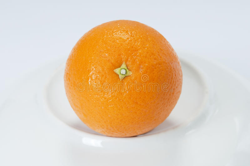 Orange. One of the orange in the white background royalty free stock images