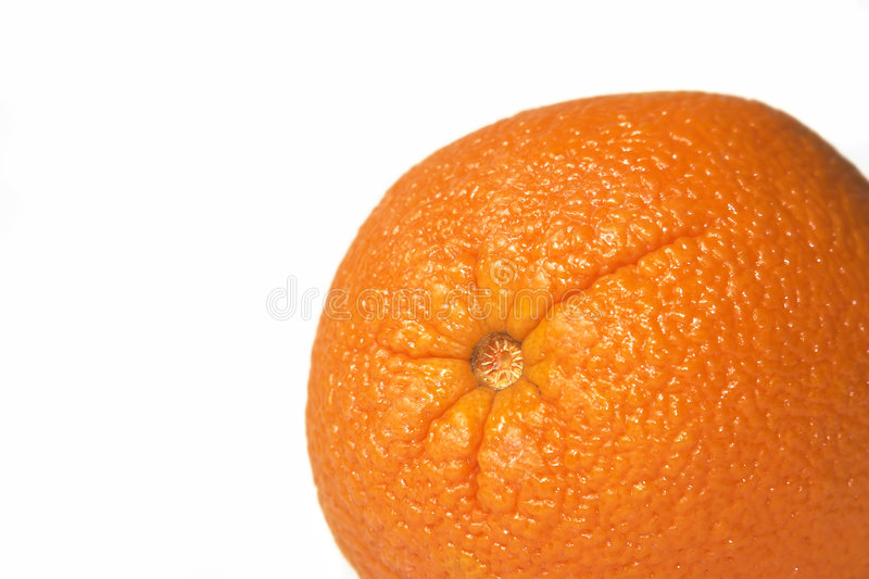 Download Orange stock image. Image of orchard, healthy, fresh, peel - 1720781