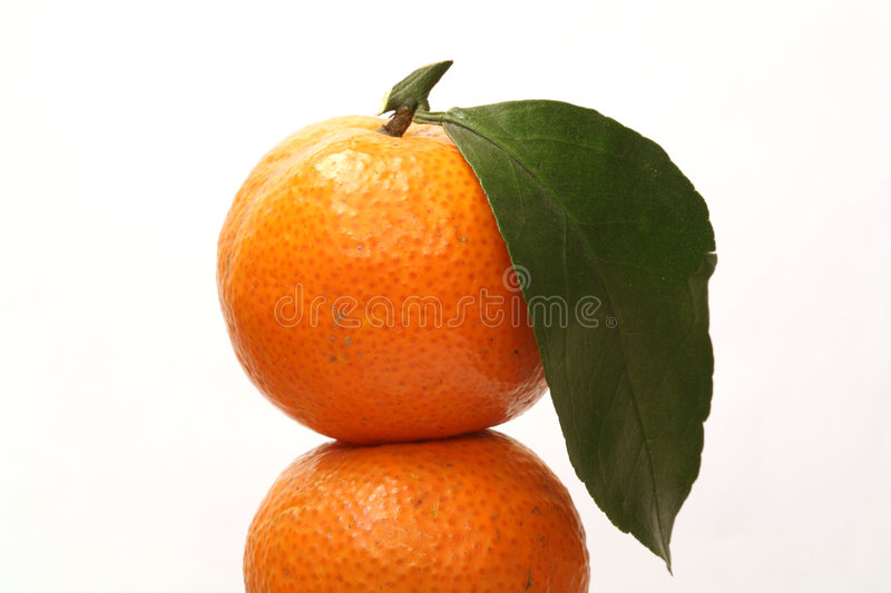 Download Orange stock photo. Image of nature, leaf, fresh, green - 1871266