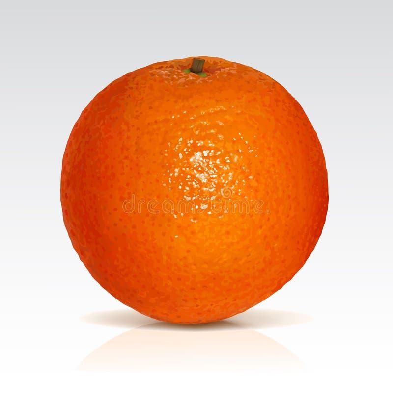 Download Orange stock vector. Image of organic, ripe, sweet, object - 18978014
