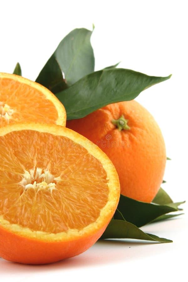 Free Orange Stock Photography - 1918502