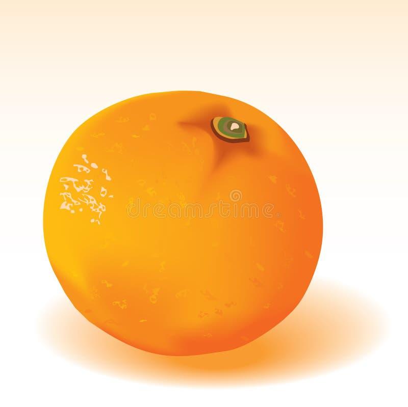Free Orange 2 Stock Photos - 10899653