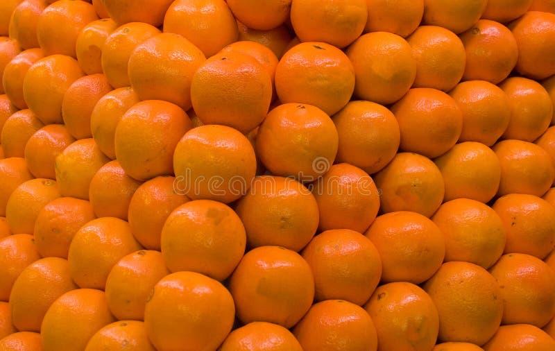 orange arkivbild