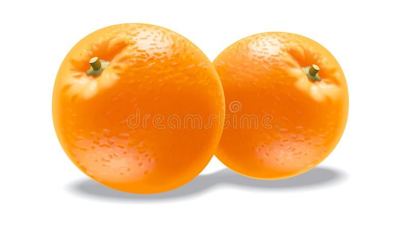 orange stock illustrationer