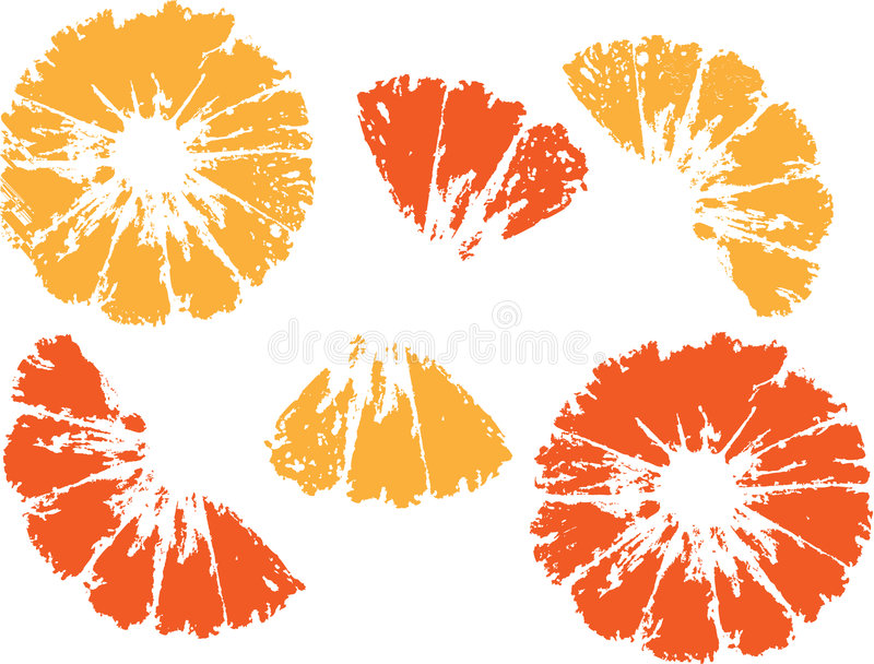 Download Orange stock vector. Illustration of sweet, color, orange - 7510003