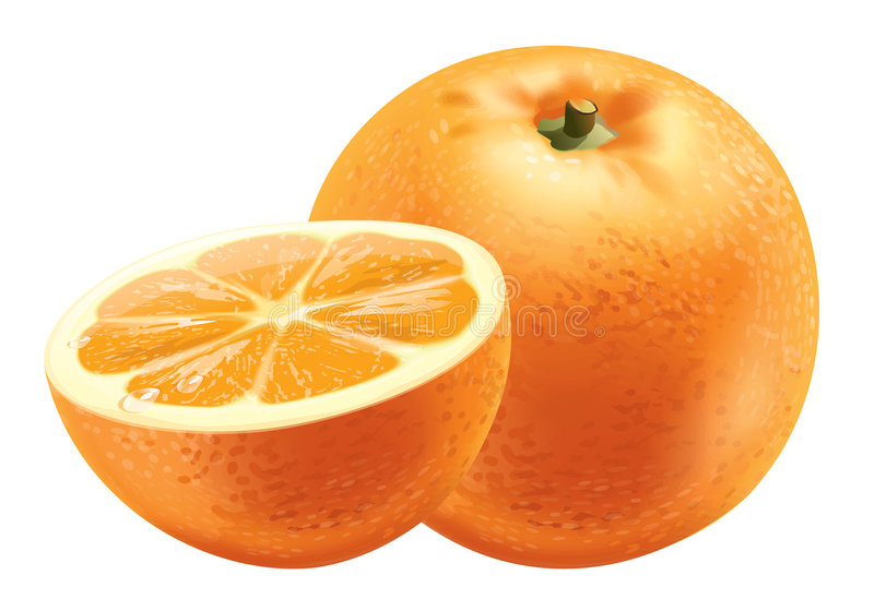 orange vektor illustrationer