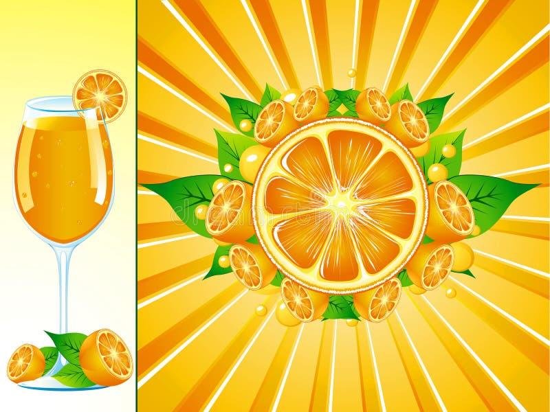 Download Orange stock vector. Illustration of rind, healthy, acid - 8839358