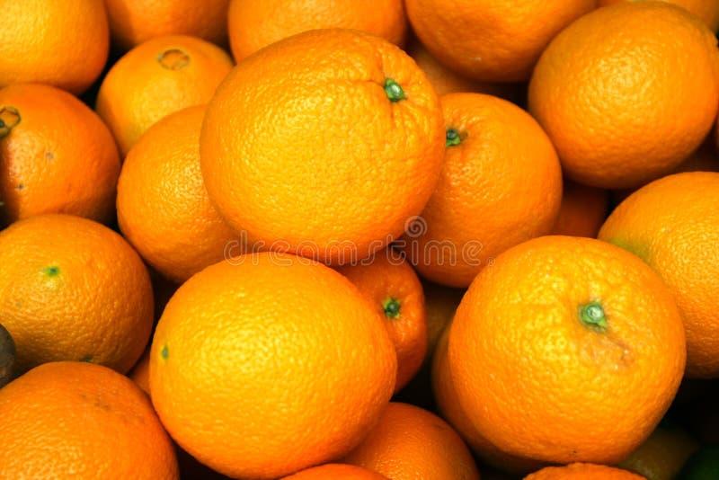 orange royaltyfri bild