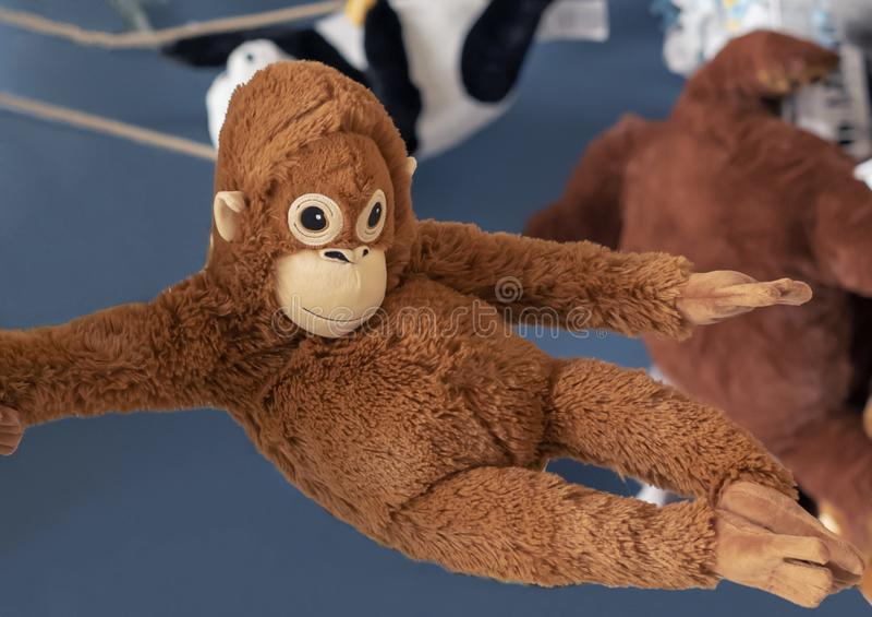 Orange Affe des weichen Spielzeugs im Spielzeugsladen stockfoto