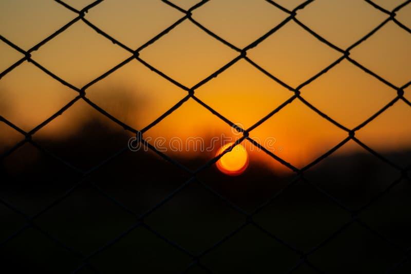 Orange aftonhimmel med den suddiga solen på horisonthostaketet Idérik idé underexponerat foto royaltyfri fotografi