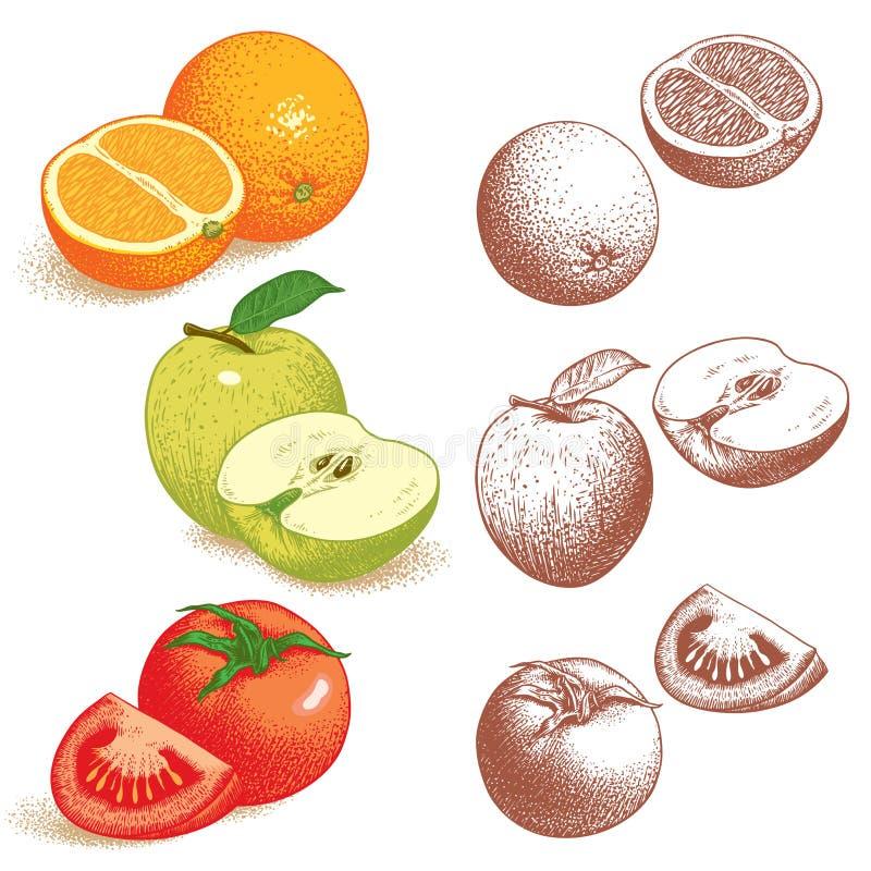 Orange, Apple, Tomate lizenzfreie abbildung