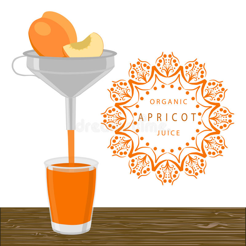 The orange apricot. Abstract vector illustration logo whole ripe fruit apricot green stem leaf cut sliced glass background.Apricot drawing consisting of tag royalty free illustration