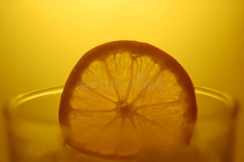 Orange auf einem Schnapsglas