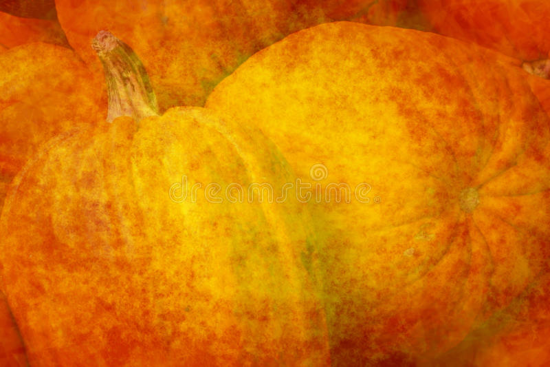 Orange background with big pumpkins stock photography