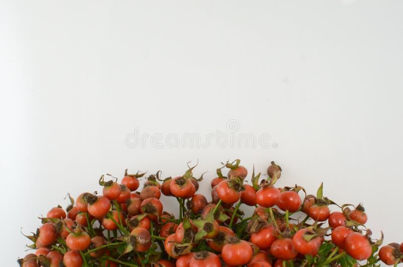 Orange Beeren lokalisieren auf weißem Hintergrund stockbilder