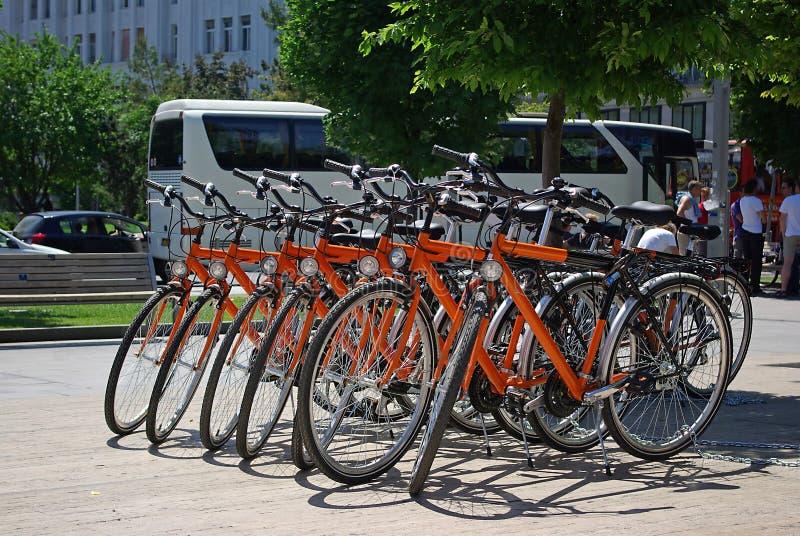 Orange bicycles royalty free stock image