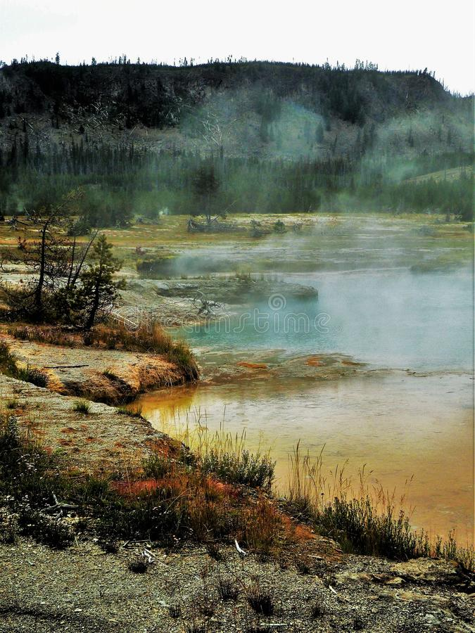 Colorful Geothermal Pools in Yellowstone. Orange and blue hot springs revealed beneath a foggy screen of steam. Small shrubs and grasses line the edge of the stock images