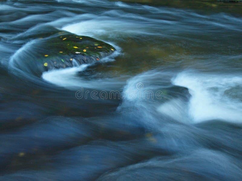 Orange bokträdsidor på den mossiga stenen nedanför ökande vattennivå. Suddig rörelse av vågor runt om stenen. royaltyfri bild