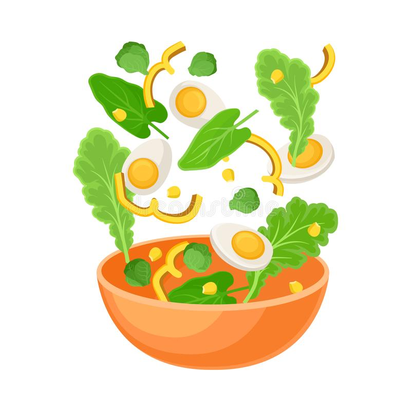Orange bowl with boiled egg and herbs. Vector illustration on a white background. stock illustration