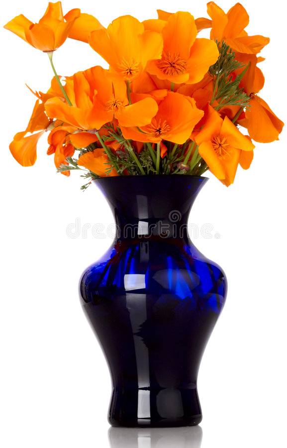 Free Orange California Poppy S In Blue Vase Royalty Free Stock Photos - 9027138