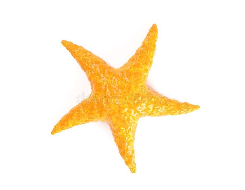 Orange Caribbean Starfish na białym tle royalty ilustracja