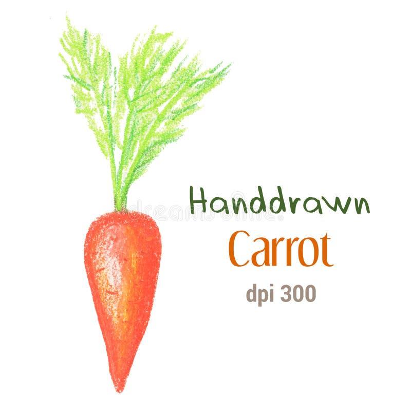 Orange carrot by oil pastel isolated on white background. Fresh carrot handdrawn illustration. stock illustration