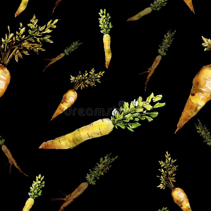 Orange carrot wild vegetable. Seamless background pattern. Fabric wallpaper print texture. Aquarelle wild vegetable for background, texture, wrapper pattern or stock photography