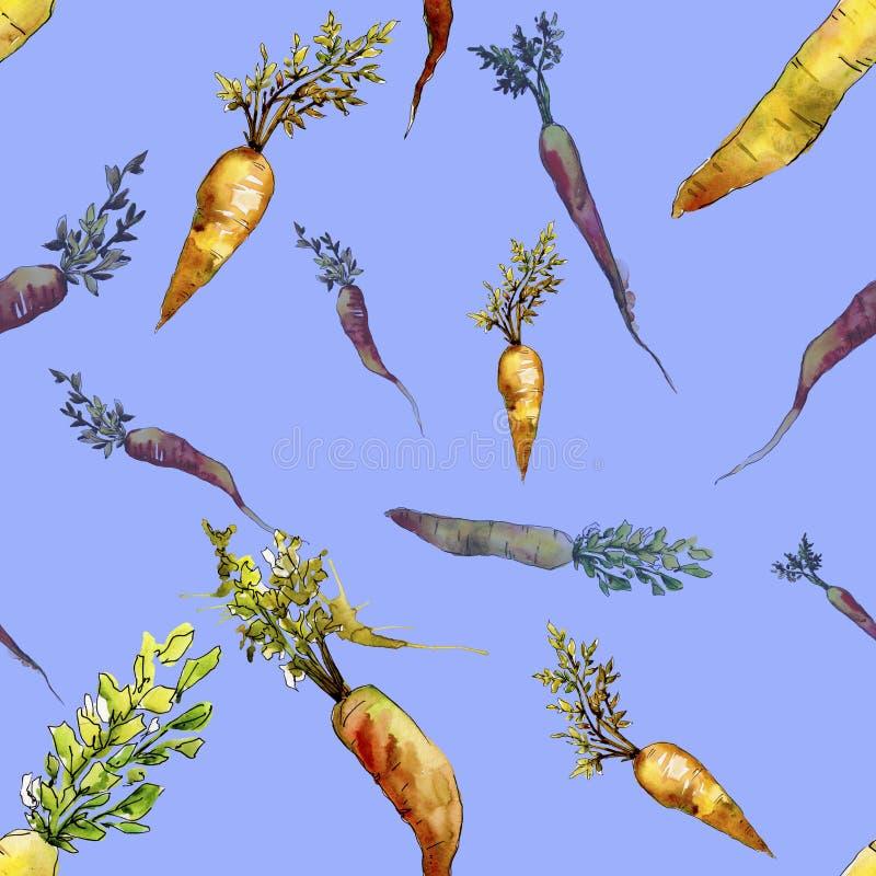 Orange carrot wild vegetable. Seamless background pattern. Fabric wallpaper print texture. Aquarelle wild vegetable for background, texture, wrapper pattern or stock image